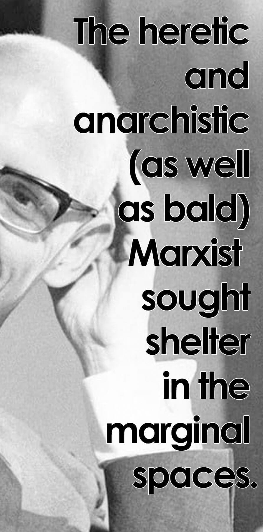 michel foucault in the margin